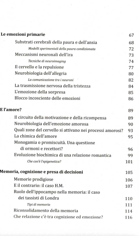 cervelloemozioni4396